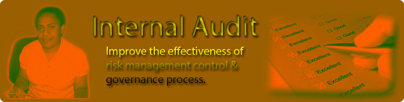Internal-Audits